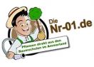 nr-01.de