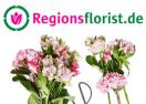 regionsflorist.de
